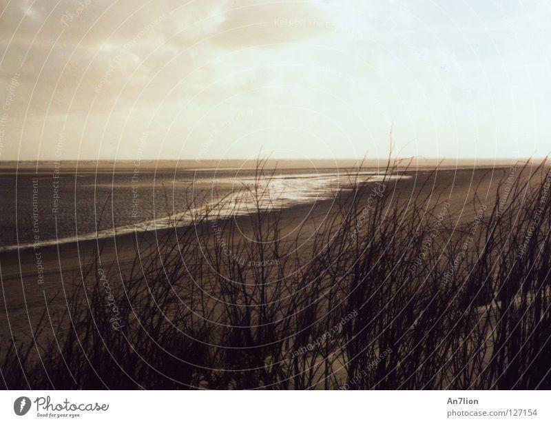 Ocean Beach Clouds Dark Bright Coast High tide Low tide Ameland