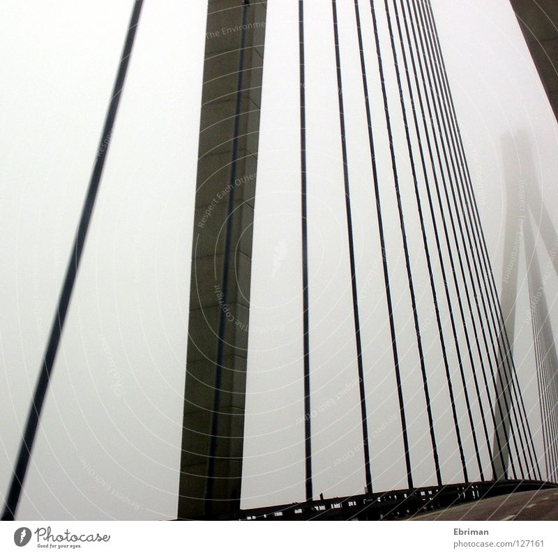 ghost bridge Fog Bridge Column Street Crash barrier Steel cable Gray Concrete Lanes & trails Driving Traverse Fjord Loneliness Bad weather Rope Line Graphic