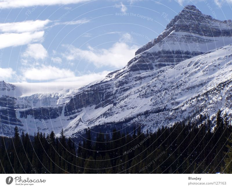 Winter Mountain Canada Snowscape Glacier Rocky Mountains