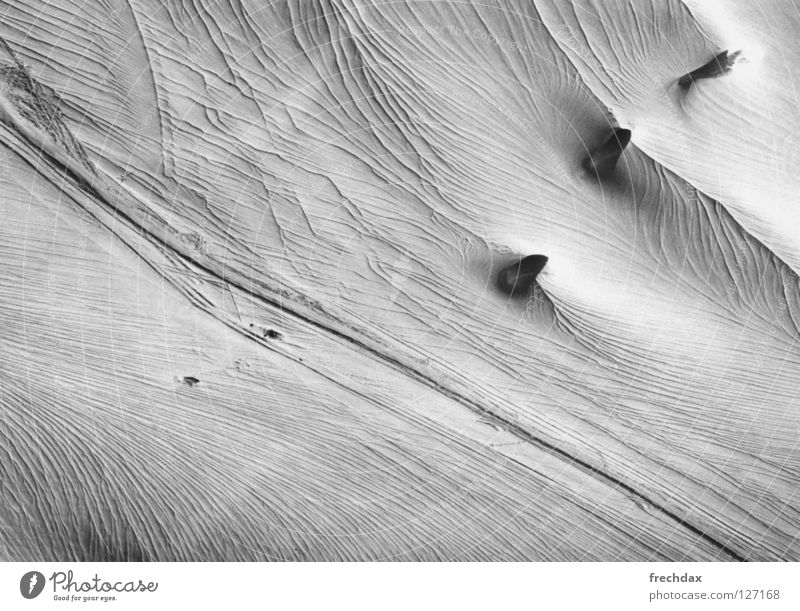pachyderms Glacier Fat Ice age Ski tour Vacation & Travel Cold Ski tracks Perpetual ice Frozen Austria Canton Graubünden Switzerland Black & white photo