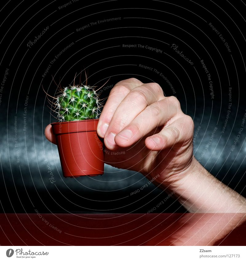 Human being Nature Hand Green Plant Red Black Dark Brown Fear Funny Glittering Fingers Crazy Table Point