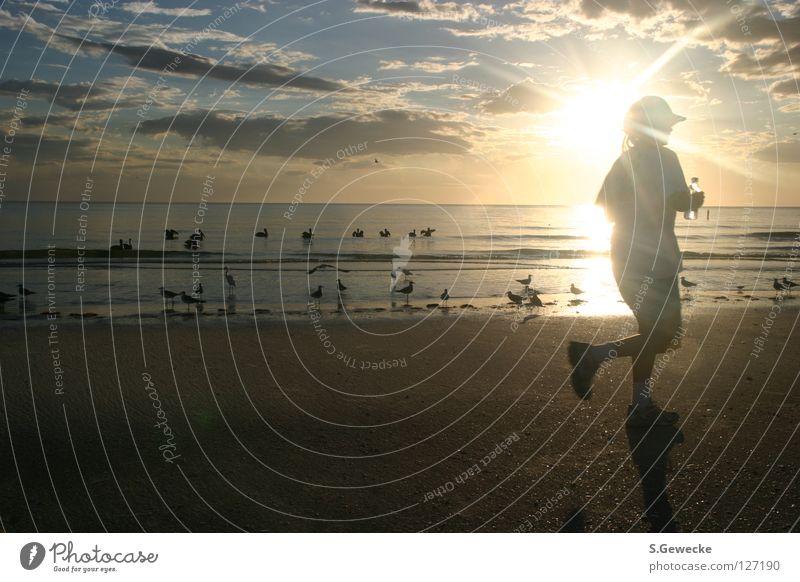 sunset jogger Sunset Jogger Florida Beach Sports Playing USA