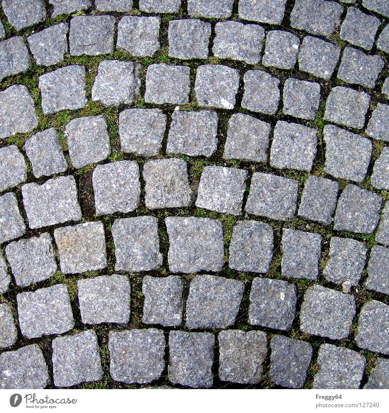 pavement Pavement Gray Square Granite Traffic infrastructure Stone Cobblestones Background picture Detail Section of image