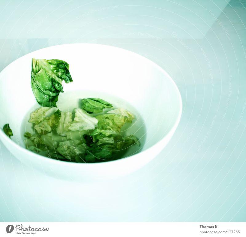 White Green Vegetable Oil Bowl Lettuce Vinegar Salad leaf