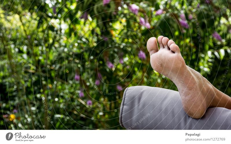 After gardening Lifestyle Summer Garden Woman Adults Feet Toes Sole of the foot 1 Human being Environment Nature Beautiful weather Bushes Relaxation Free