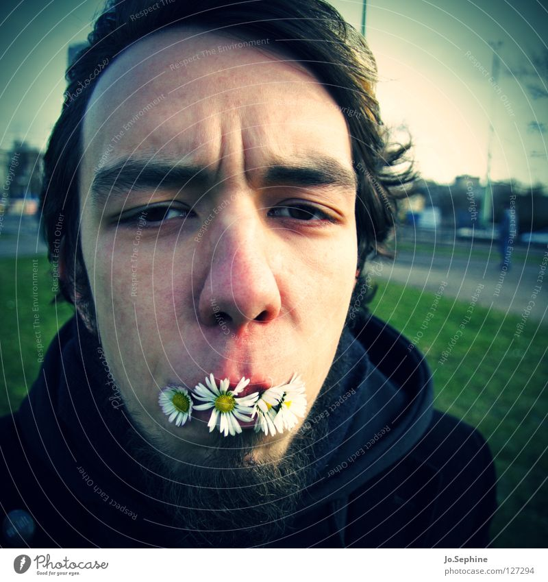 Human being Youth (Young adults) Plant Face Adults Young man Spring Funny Blossom 18 - 30 years Facial hair Daisy Absurdity Humor Vignetting Furrowed brow
