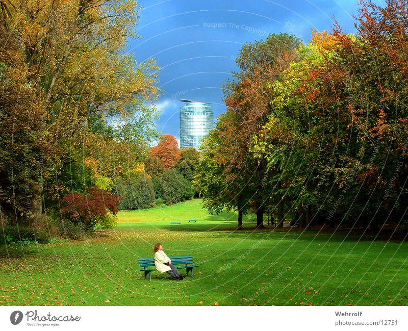 Relaxation in the park Park Meadow Woman Tree Hofgarten Bench Duesseldorf