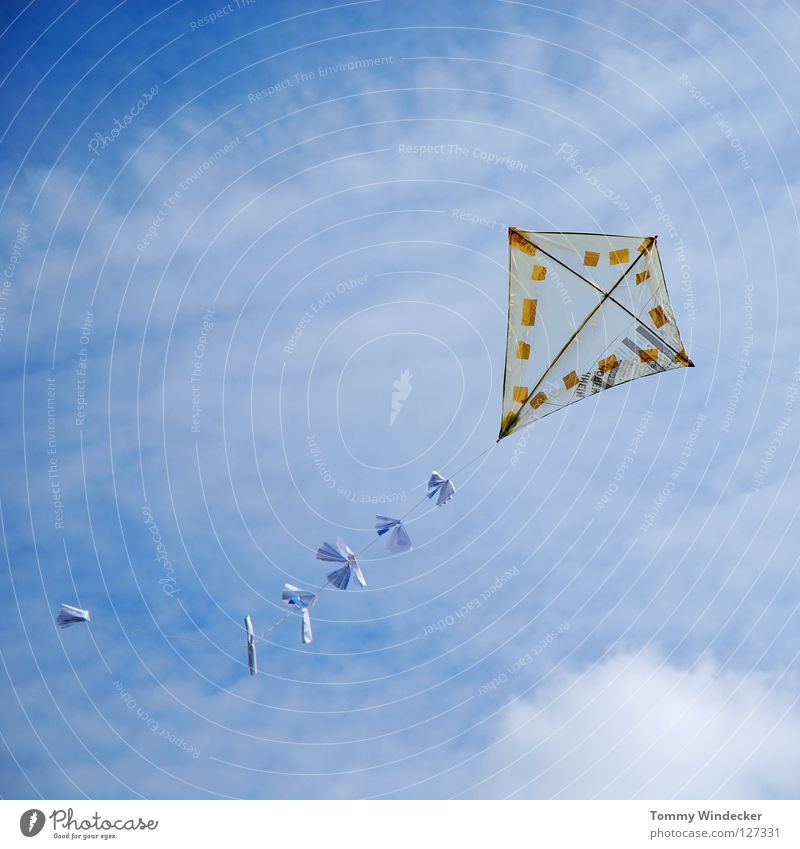 Kite Aerial Photography II Dragon Airplane Gale Multicoloured Leisure and hobbies Toys Handicraft Home-made Autumn Hang gliding Clouds Ascending Aircraft China