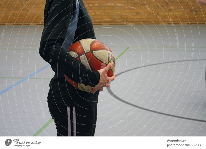Sports Playing Wait Success Electricity Ball Concentrate Throw Basketball Coach Gymnasium School sport Be suitable Sporting grounds Basketball arena