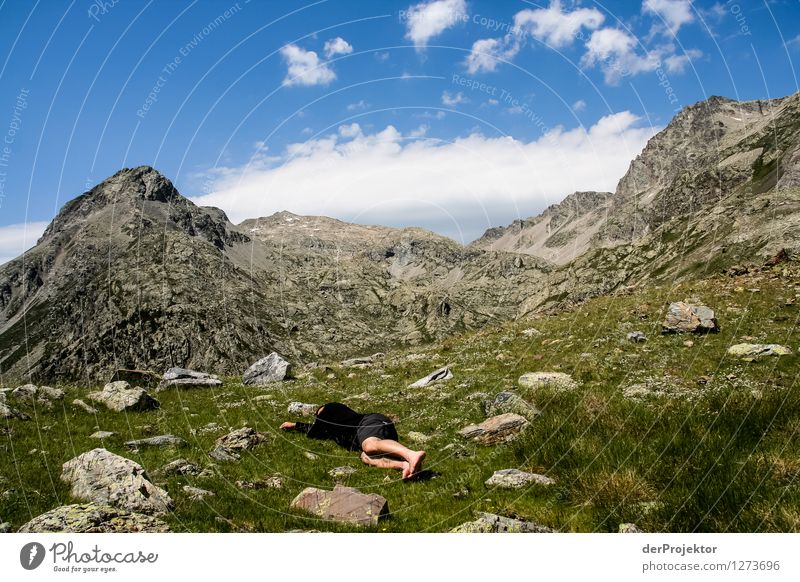Nature Vacation & Travel Plant Summer Eroticism Landscape Loneliness Animal Far-off places Mountain Environment Freedom Tourism Hiking Trip Beautiful weather