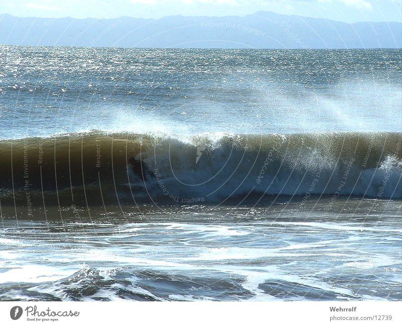Water Ocean Beach Waves USA Surfer California San Diego County