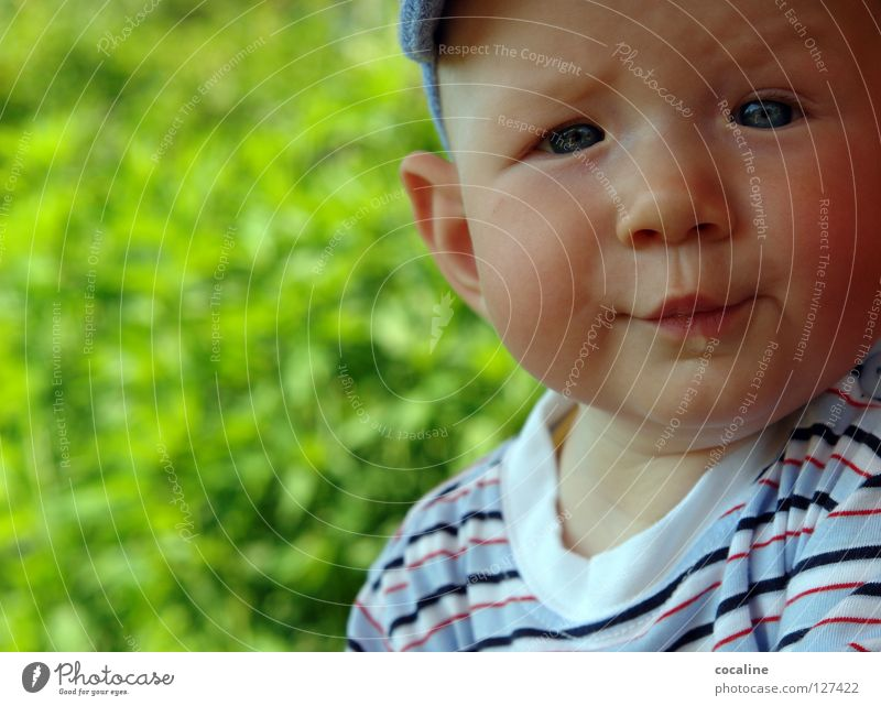 Child Face Eyes Boy (child) Head Baby Sweet Ear Cap Toddler Facial expression Ask Brash Eyebrow Striped Skeptical