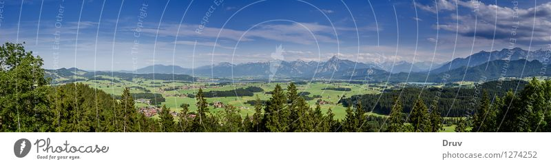 alpine panorama Vacation & Travel Tourism Trip Sightseeing Summer Summer vacation Nature Landscape Plant Sky Clouds Forest Mountain Peak Relaxation Blue Green