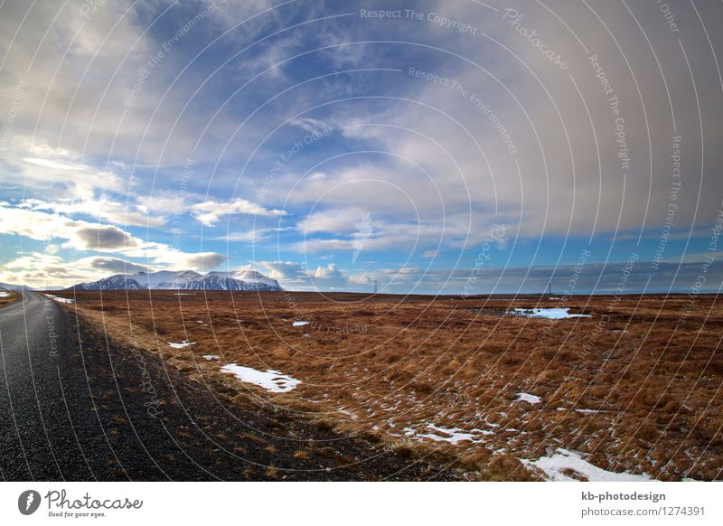 Vacation & Travel Landscape Far-off places Winter Spring Jump Tourism Wind Island Adventure Asphalt Iceland