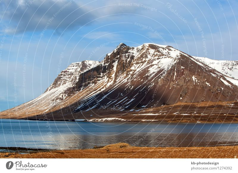 Vacation & Travel Landscape Far-off places Mountain Spring Freedom Tourism Adventure Iceland Snæfellsnes