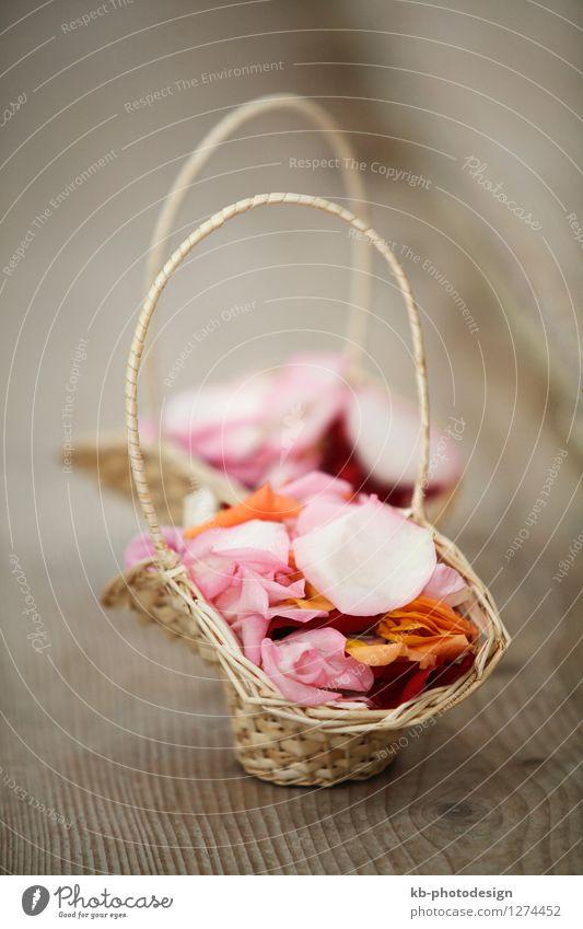 Colorful flower basket for wedding Feasts & Celebrations Wedding Plant Flower Rose Leaf Blossom Multicoloured Emotions bride car celebrate celebration church