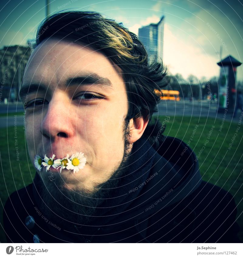 Human being Youth (Young adults) Plant Joy Face Adults Young man Spring Funny Blossom 18 - 30 years Facial hair Daisy Absurdity Vignetting Eco-friendly
