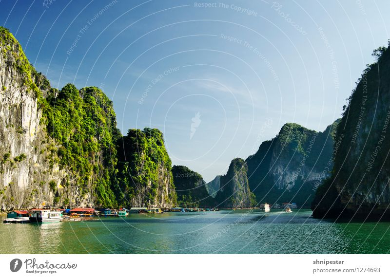 Halong Bay, Vietnam Life Vacation & Travel Tourism Trip Adventure Far-off places Sightseeing Expedition Summer Island Mountain Round trip Vietnamese Environment