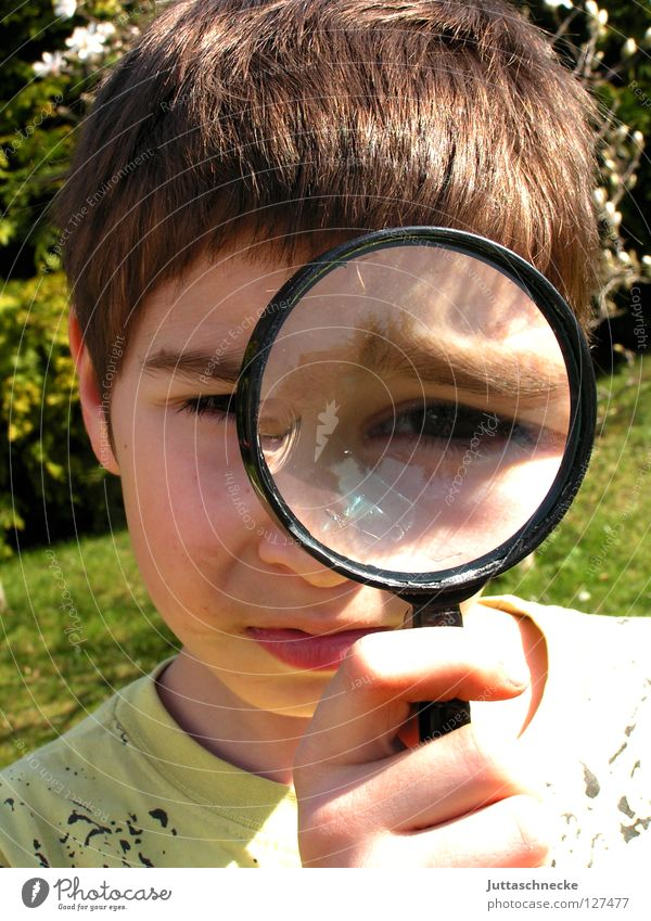 The world in big looks funny Boy (child) Child Magnifying glass Enlarged Playing Skeptical Accuracy Small Large Investigate Agent Tracks Informer Concentrate