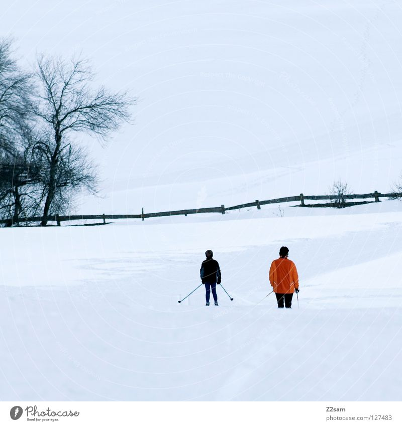 Human being Child White Tree Vacation & Travel Winter Cold Snow Sports Mountain Orange Leisure and hobbies Skiing Driving Tracks Fence