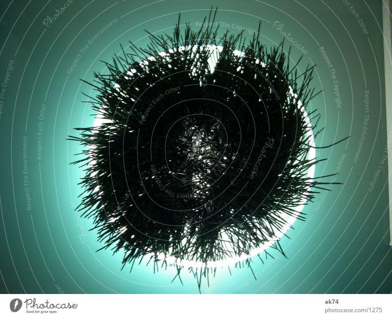 Circle Turquoise Photographic technology