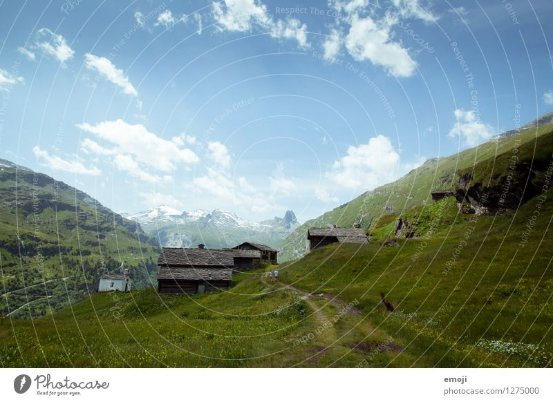 postcard Environment Nature Landscape Sky Summer Beautiful weather Hill Alps Mountain Natural Blue Green Tourism Class outing Switzerland Vals Colour photo
