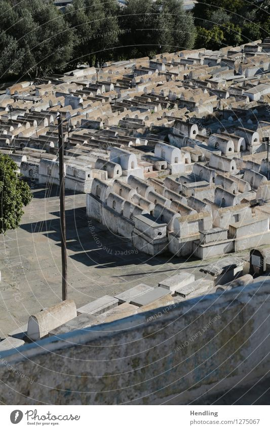 Jewish Cemetery Architecture Culture Fez Morocco Africa Manmade structures Stone To console Calm Hope Belief Sadness Death Respect Pride Uniqueness