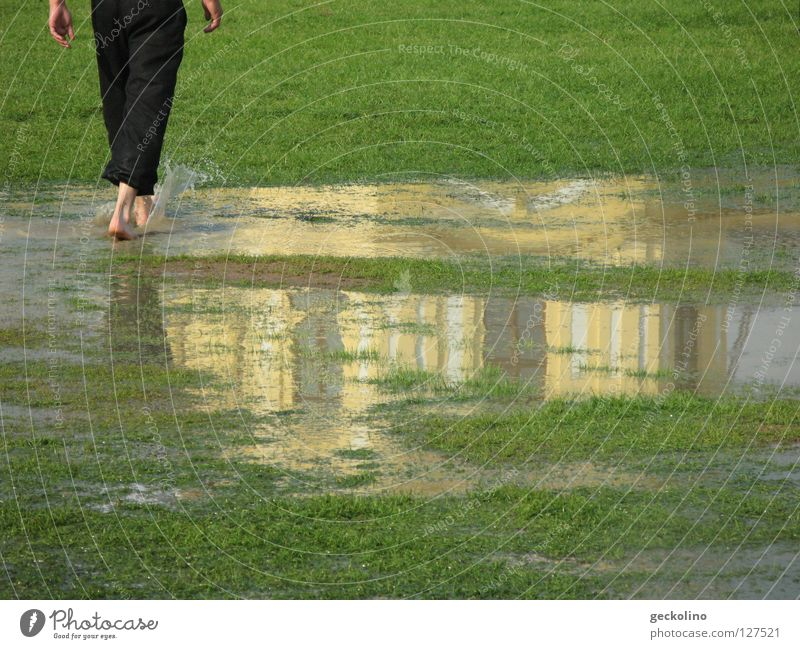 Water Green Summer Meadow Rain Going Wet Thunder and lightning Inject Puddle Barefoot Mud Indifference Kassel Rich pasture