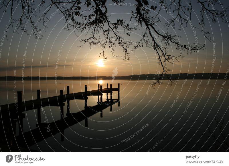 Sky Water Tree Sun Calm Lake Dream Romance Branch Munich Footbridge Starnberg Lake Starnberg