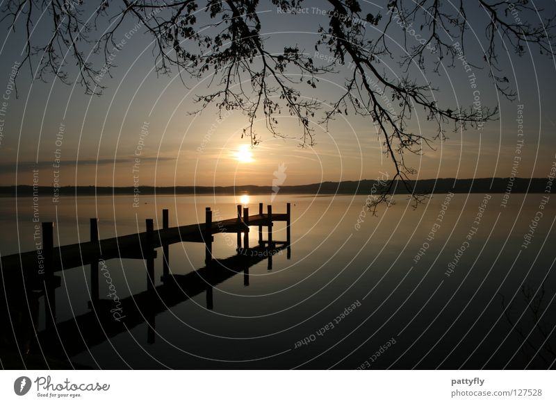 When The Sun Goes Down... Sunset Footbridge Starnberg Lake Starnberg Reflection Calm Evening Tree Romance Dream Munich sunrise sunshine water Sky Branch