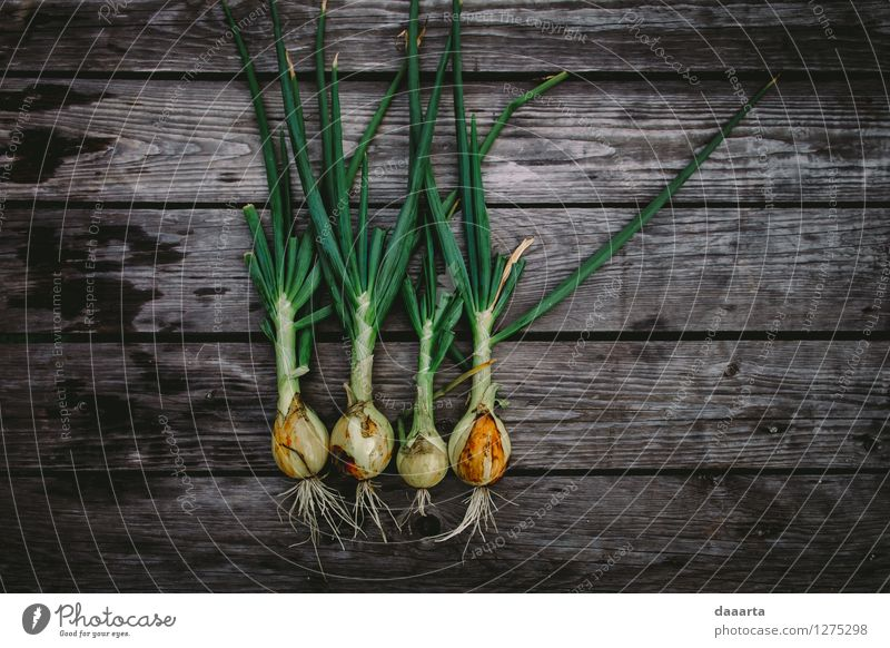 les onions Food Vegetable Lettuce Salad Onion spring onion Nutrition Organic produce Vegetarian diet Lifestyle Elegant Style Joy Harmonious Leisure and hobbies