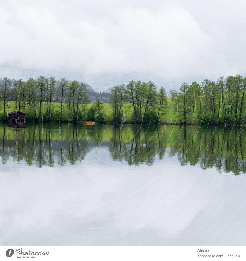 single double Plant Tree Lakeside Pond Hut Boathouse Boating trip Fishing boat Rowboat Swimming & Bathing Simple Green Orange Calm Loneliness Relaxation Freedom