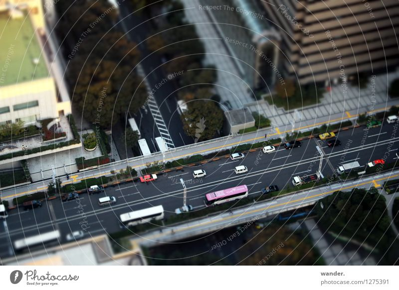 Miniature view: Road from above - Tokyo, Japan Far-off places City trip Sun Beautiful weather Tree Asia Capital city Port City Downtown