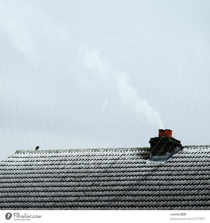 The roof of the world. SECOND Cold Winter Roof Bird Clouds Gray Dreary Lacking Ice Simplistic Bad weather Decent Serene Empty Smoke Heat Loneliness Calm Chimney