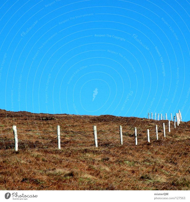 Sky Blue Summer Mountain Meadow Grass Building Wall (barrier) Wood Brown Above Horizon Perspective Tall Dangerous Trip