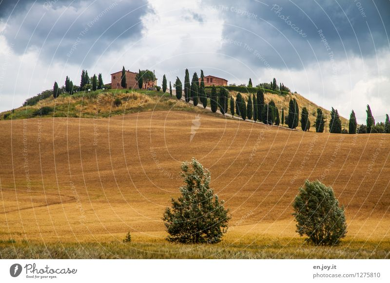 Nature Vacation & Travel Summer Landscape Environment Tourism Field Living or residing Growth Idyll Trip Italy Hill Agriculture Storm Gale
