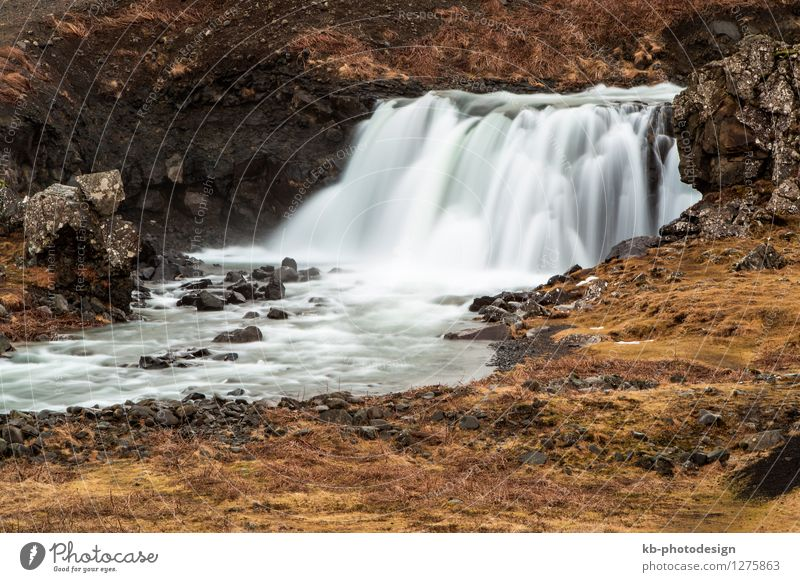 Beautiful waterfall in Iceland Well-being Relaxation Calm Meditation Vacation & Travel Tourism Adventure Far-off places Winter vacation Mountain Landscape Earth