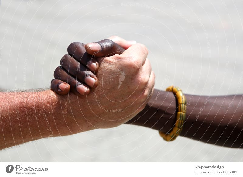 Handshake between a Caucasian and an African Healthy Economy Trade Business Success Team Human being Masculine Adults Fingers 2 30 - 45 years