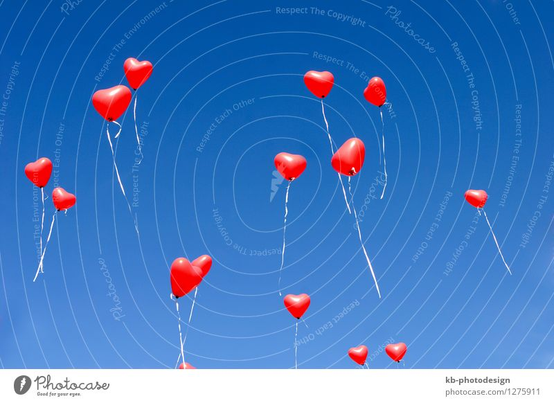 Balloon hearts in the sky Feasts & Celebrations Valentine's Day Mother's Day Wedding Birthday Sign Heart Flying Love Emotions Together Infatuation Romance