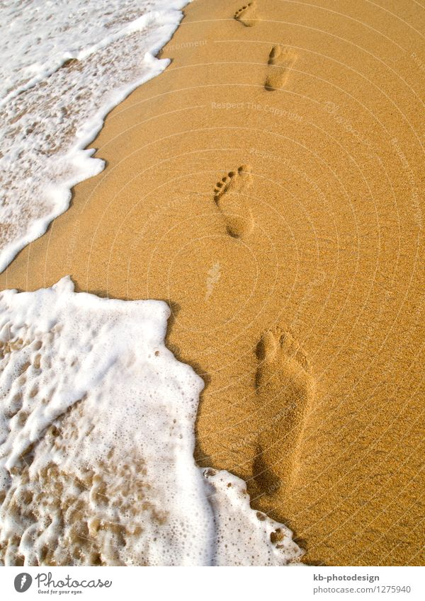 Footprint at the beach Relaxation Calm Vacation & Travel Tourism Beach Sand Beautiful weather Warmth Swimming & Bathing Joy Life waves foam sunny footprint