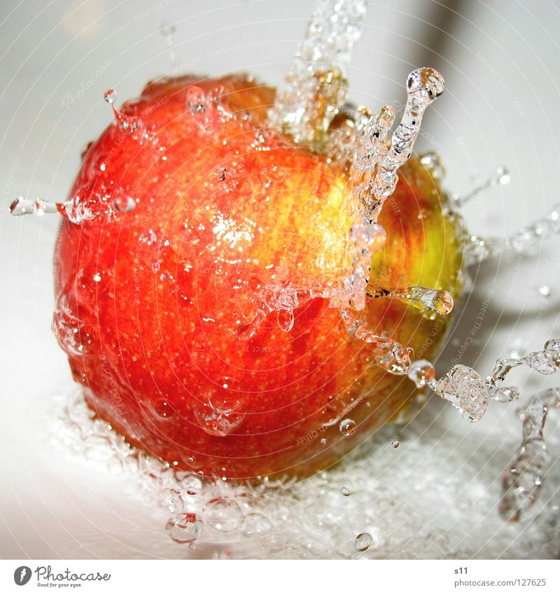 Nature Green Water Red Yellow Healthy Fruit Fresh Nutrition Skin Drops of water Sweet Round Anger Apple Refreshment