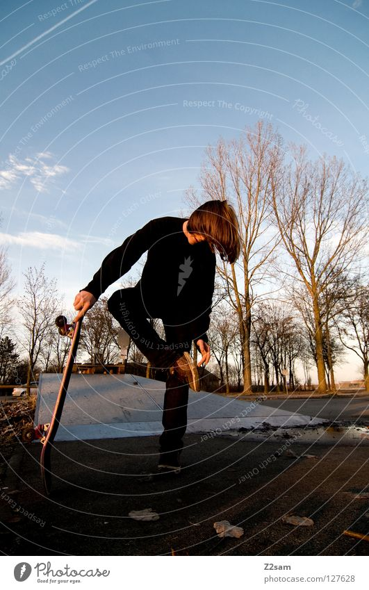 standing aid Dusk Skateboarding Contentment Striped Tar Concrete Light Tree Wide angle Youth (Young adults) Stand Sudden fall Park Leaf Footwear Clouds Black