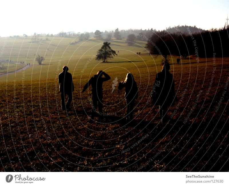 Human being Forest Dark Autumn Meadow Lanes & trails To go for a walk Anonymous Foreign