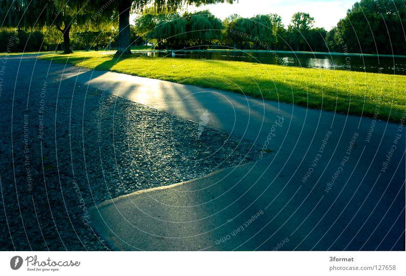 Blue Green Sun Summer Meadow Gray Garden Lanes & trails Lake Park Leisure and hobbies Concrete To go for a walk Asphalt Warehouse Pond