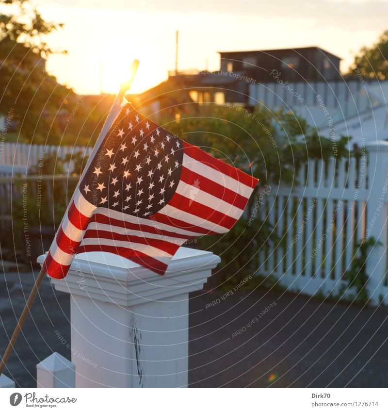 Summer House (Residential Structure) Warmth Garden Flat (apartment) Living or residing Idyll Bushes Warm-heartedness Beautiful weather Attachment USA Flag Safety (feeling of) Nostalgia Identity