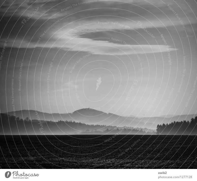 morning Environment Nature Landscape Air Sky Clouds Horizon Fog Field Forest Fresh Infinity Calm Idyll Far-off places Morning fog Haze Black & white photo
