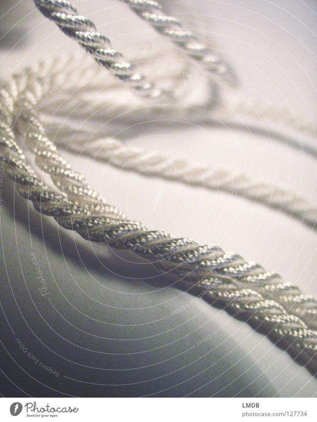 captivating String Coil Rotated Bond White Mother-of-pearl Dazzling Gray Black Undulating Bind fast Attachment Macro (Extreme close-up) Close-up Rope