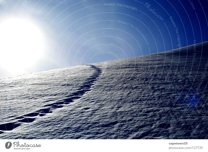 Tracks in the snow Sky White Winter Snow heaven blue Mountain Sun Landscape