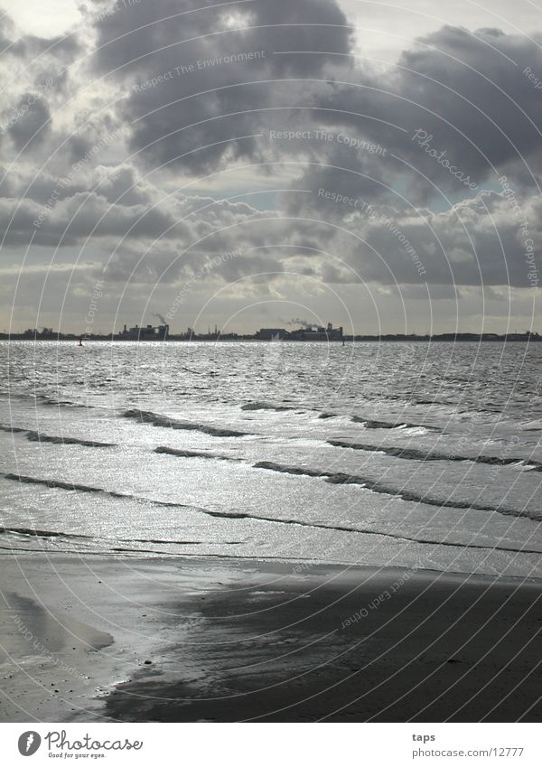 Water Ocean Gray Mud flats Low tide Slick Ems