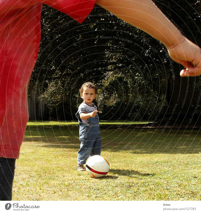 Child Tree Sun Joy Meadow Playing To talk Boy (child) Arm Soccer T-shirt Communicate Ball Toys Direction Indicate
